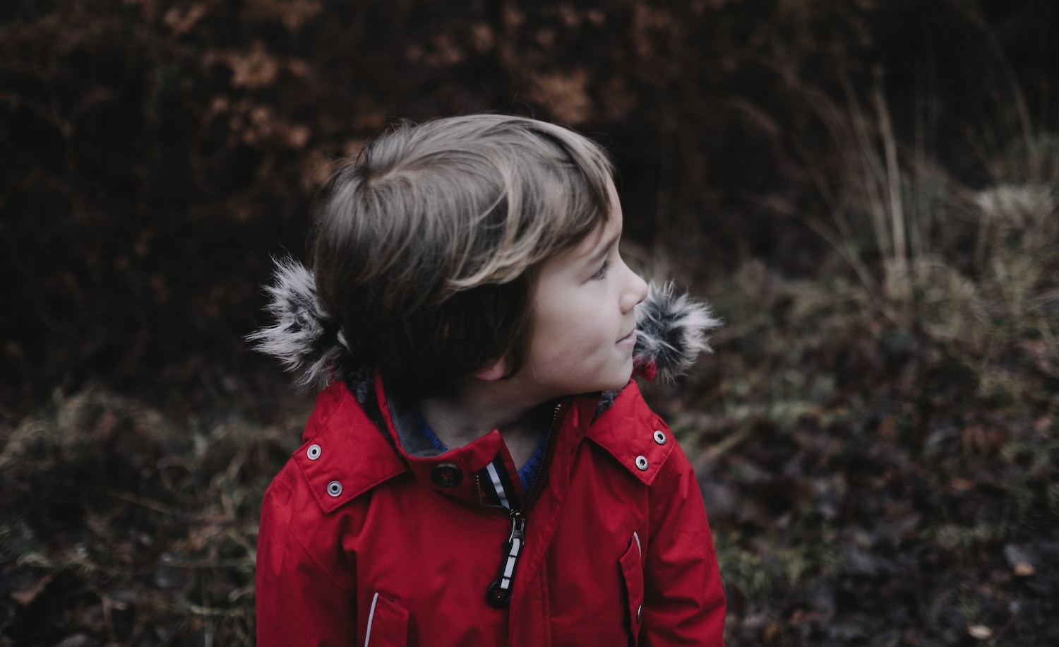 What Are Introverts Like as Children? 7 Characteristics