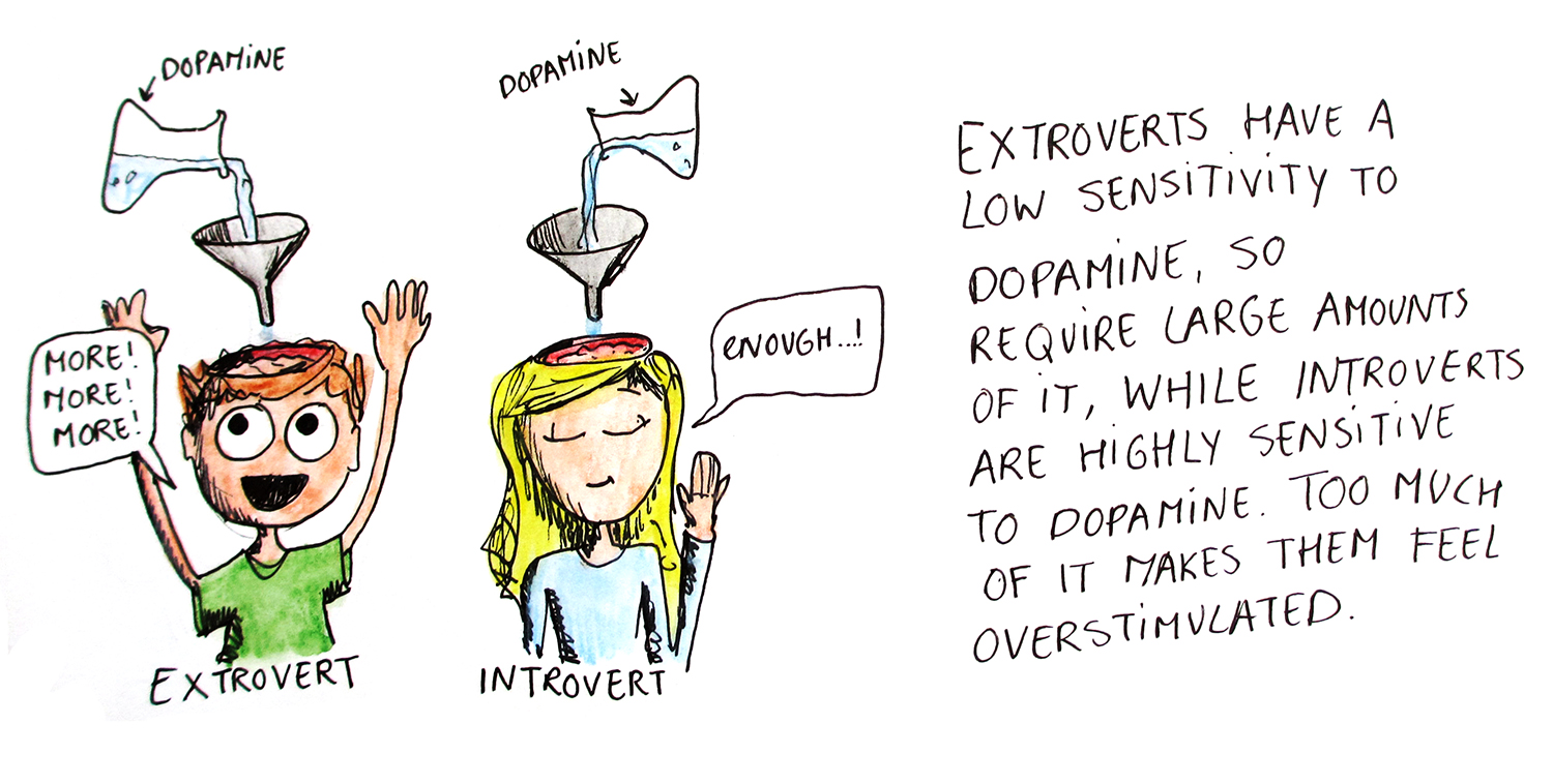 Introvert dopamine sensitivity