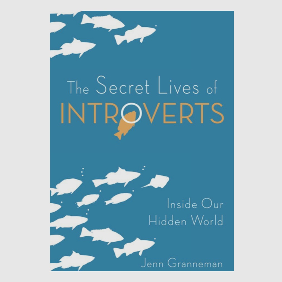 gifts for introverts Secret Lives of Introverts
