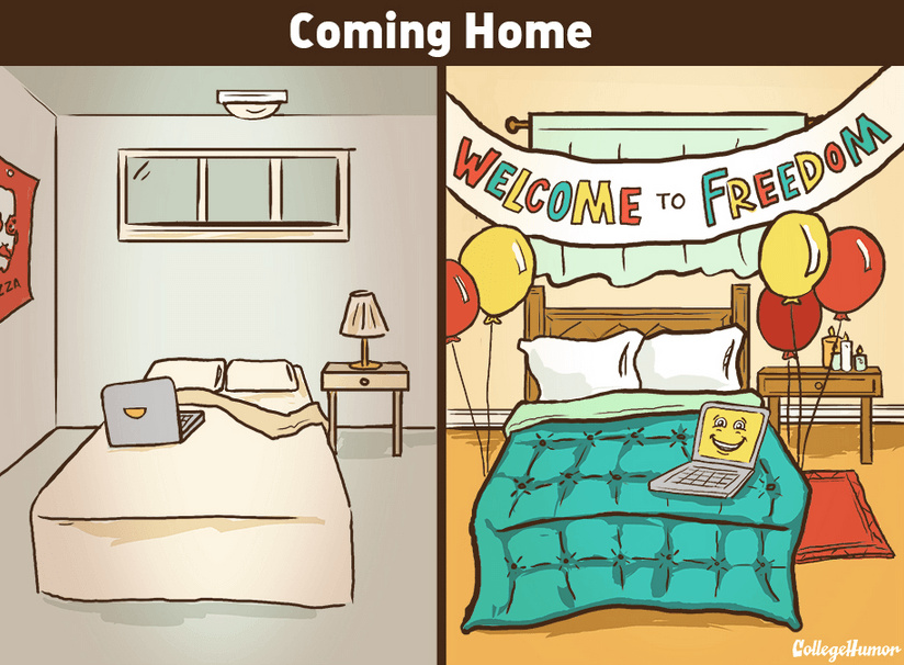 introvert coming home meme
