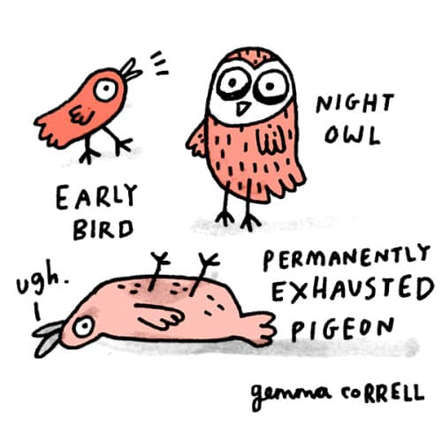 Gemma Correll's comic about an early bird, night owl, and permanently exhausted pigeon