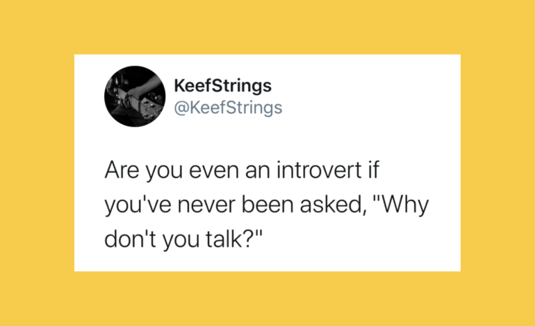 a funny introvert tweet